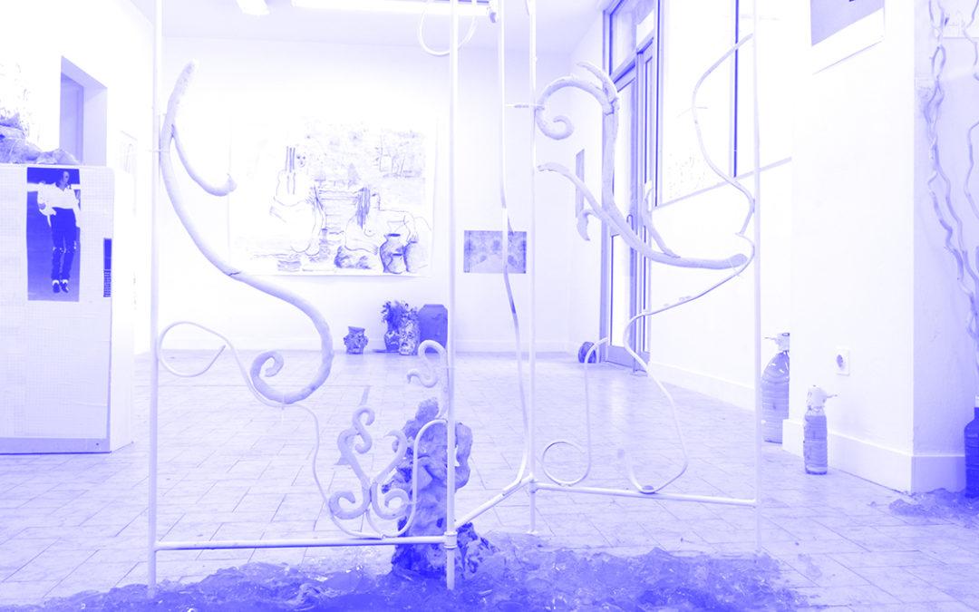Grégory Cuquel / Ludovic Zeller – Ses désirs, ses passions, ses rêves